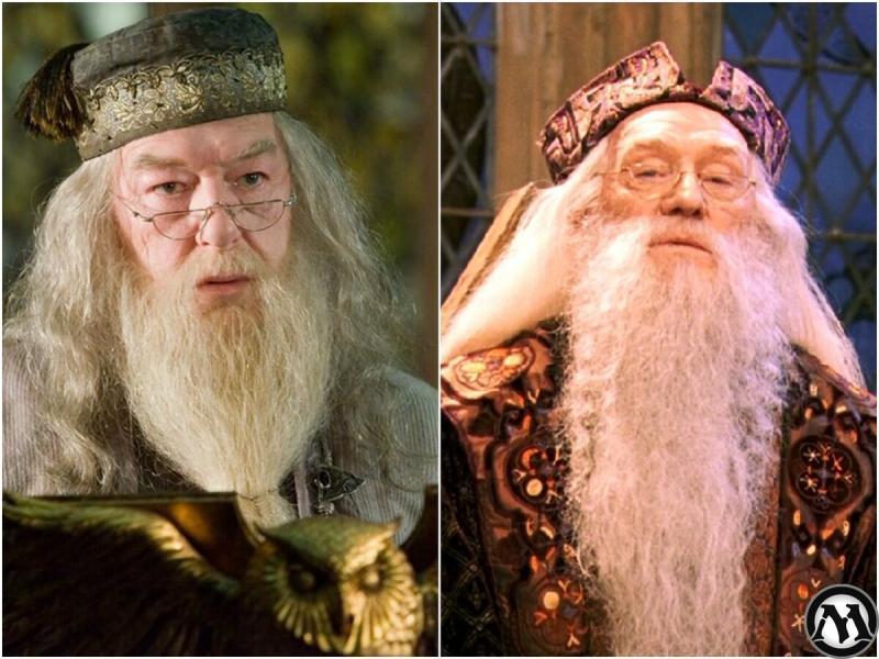 Смотрим как бы выглядели актёры Гарри Поттера если б полностью соответствовали книгам. Часть ll