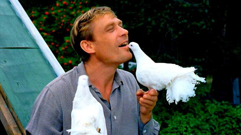 """Тест: Как вы помните фильм """"Любовь и голуби""""?"""