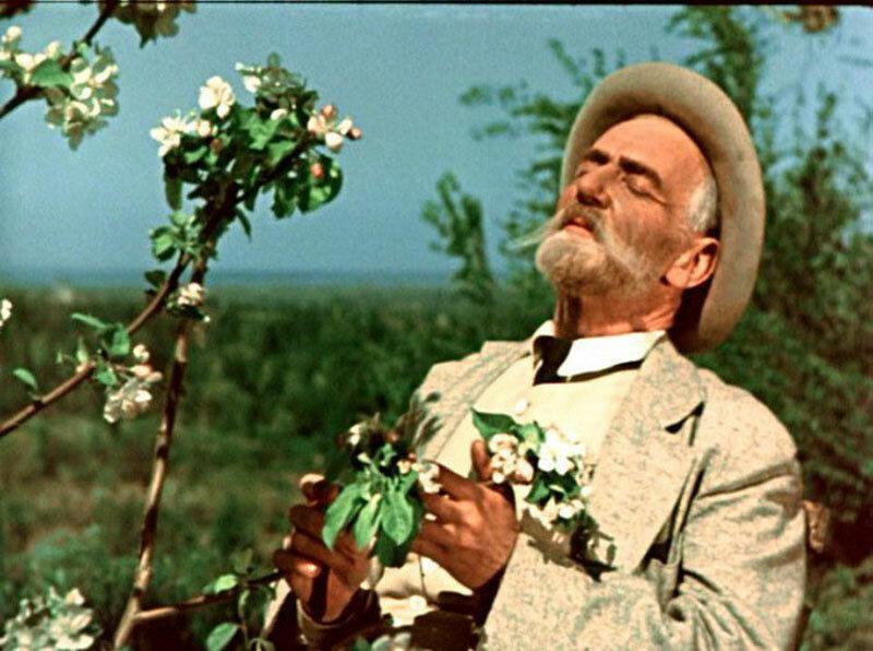 """Фильм """"Мичурин"""" снимали в яблоневом саду в Кунцево. Существует ли сейчас мичуринский сад?"""