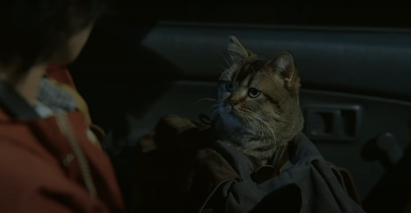 Японцы сняли фильм по темпоральной фантастике Хайнлайна