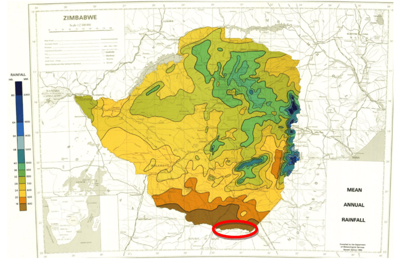 Почему момент из «Убойной силы», где Вася Рогов вызывает дождь в Африке — сплошной киноляп